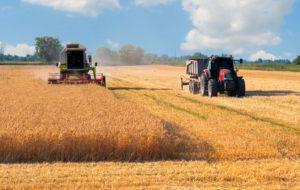 Tax Harvest